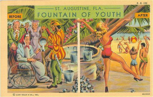 st. augustine florida, ap us history